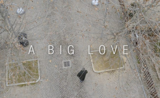 A Big Love copy